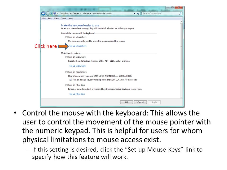 Control the mouse with the keyboard: This allows the user to control the movement of the mouse pointer with the numeric keypad.