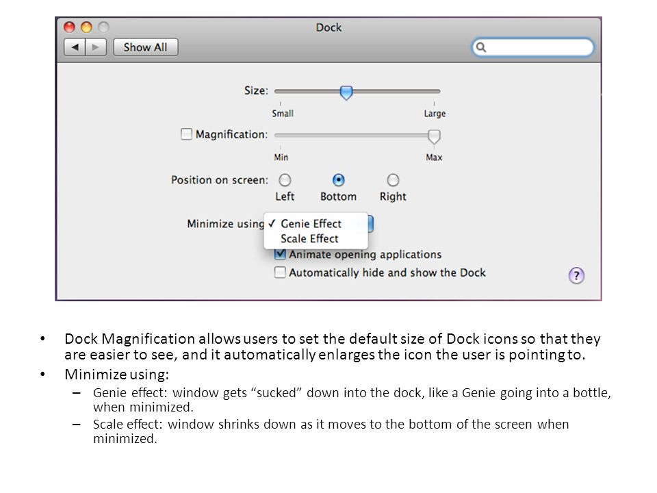 Dock Magnification allows users to set the default size of Dock icons so that they are easier to see, and it automatically enlarges the icon the user is pointing to.