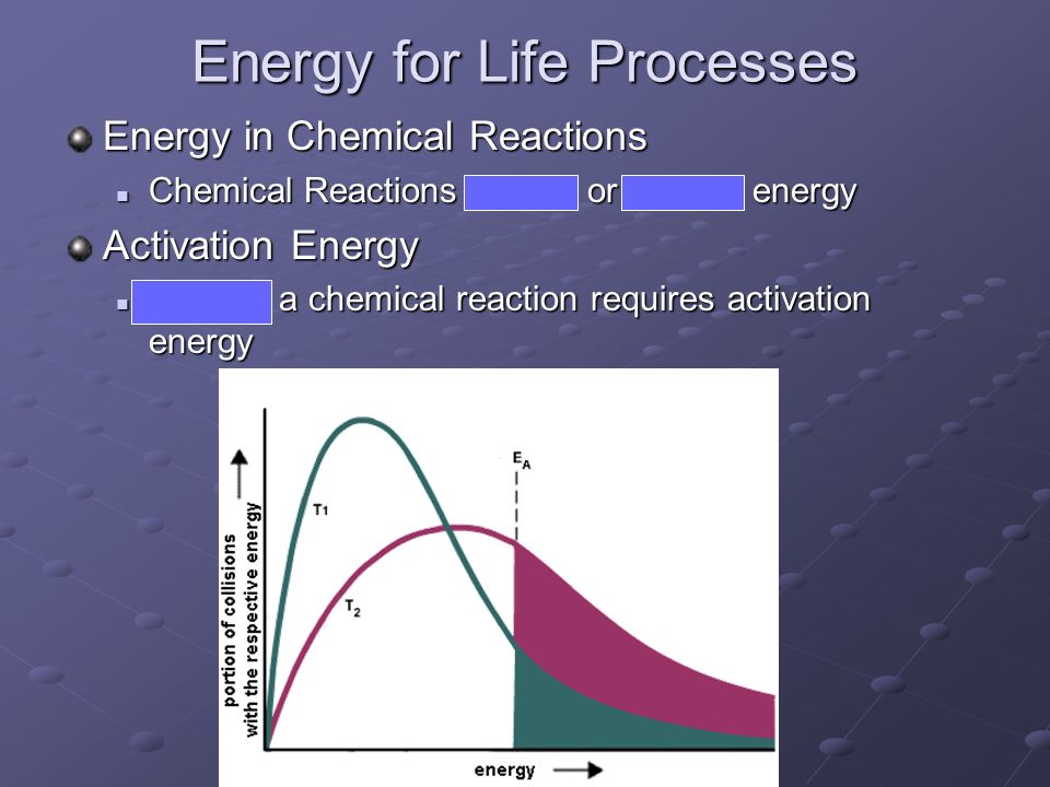 Energy for Life Processes Energy in Chemical Reactions Chemical Reactions absorb or release energy Chemical Reactions absorb or release energy Activat