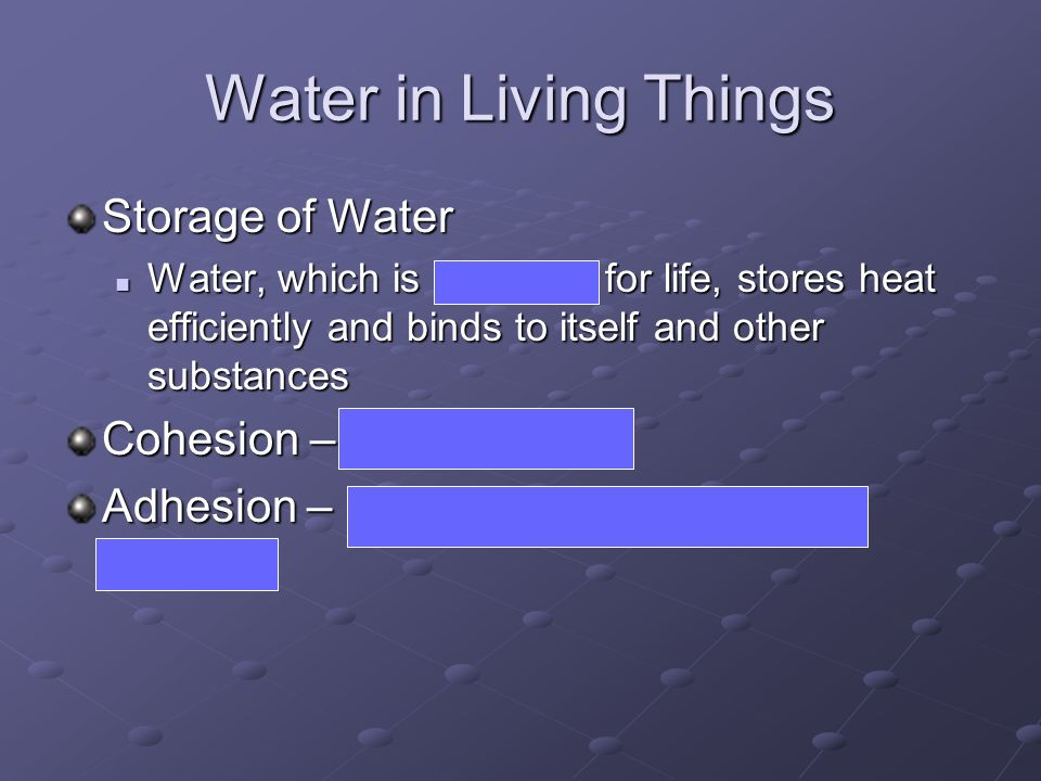 Water in Living Things Storage of Water Water, which is essential for life, stores heat efficiently and binds to itself and other substances Water, wh