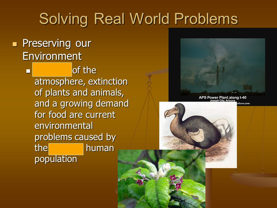 Solving Real World Problems Preserving our Environment Preserving our Environment Pollution of the atmosphere, extinction of plants and animals, and a