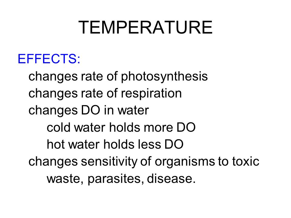 TEMPERATURE EFFECTS: changes rate of photosynthesis changes rate of respiration changes DO in water cold water holds more DO hot water holds less DO c