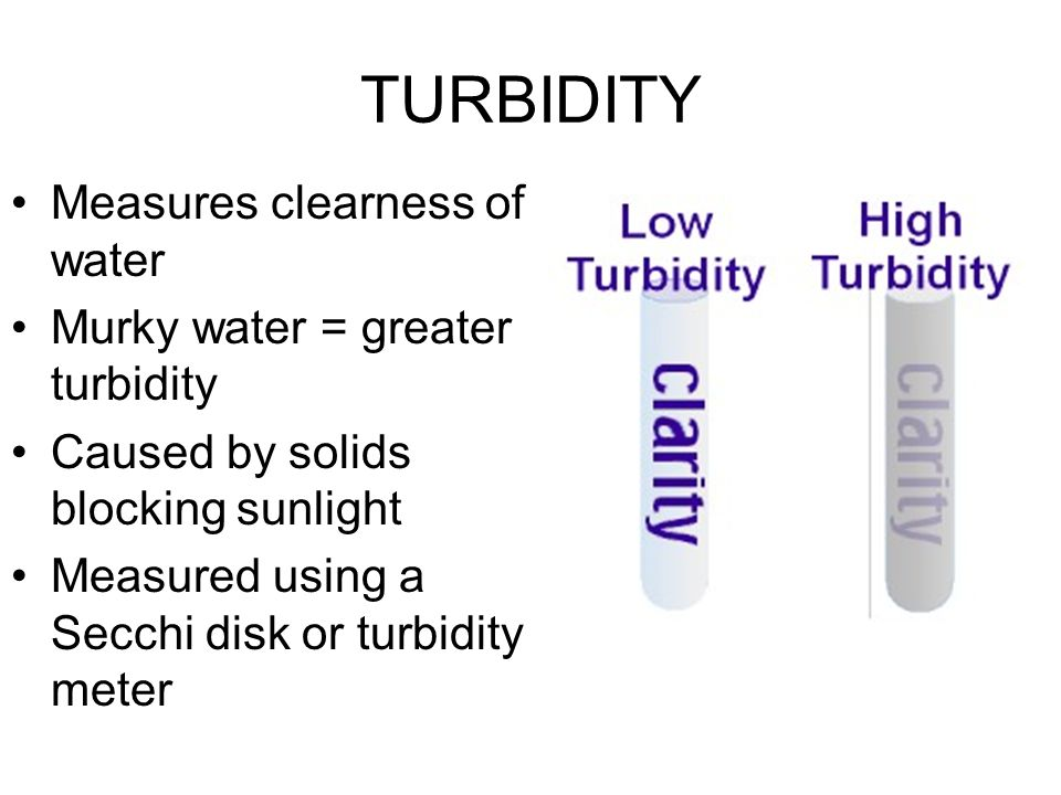 TURBIDITY Measures clearness of water Murky water = greater turbidity Caused by solids blocking sunlight Measured using a Secchi disk or turbidity met