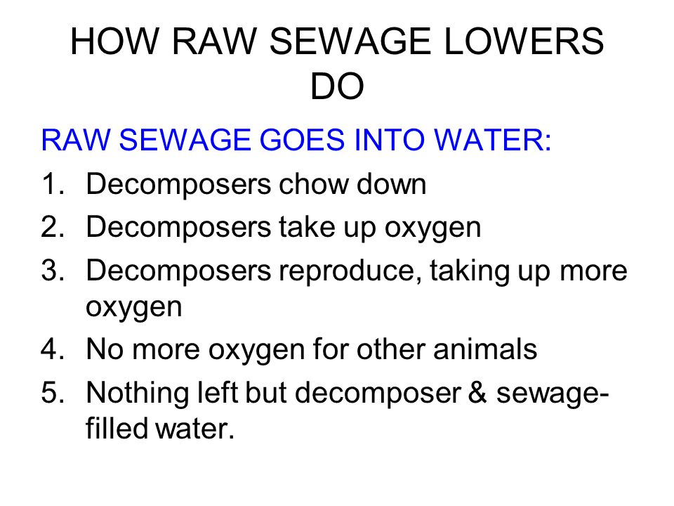 HOW RAW SEWAGE LOWERS DO RAW SEWAGE GOES INTO WATER: 1.Decomposers chow down 2.Decomposers take up oxygen 3.Decomposers reproduce, taking up more oxyg