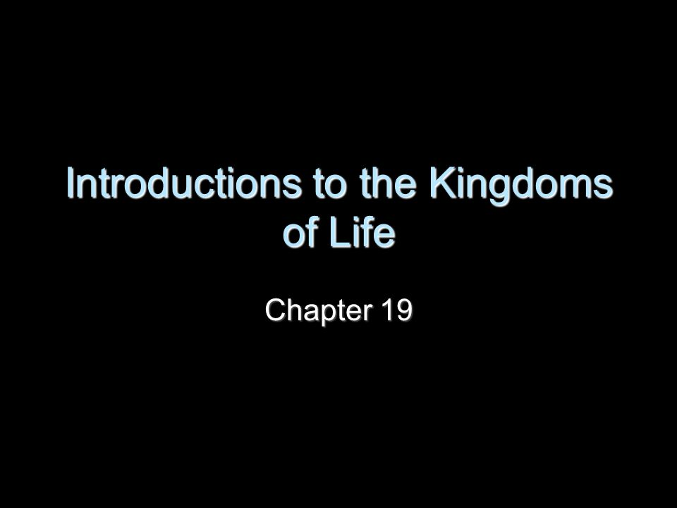Introductions to the Kingdoms of Life Chapter 19