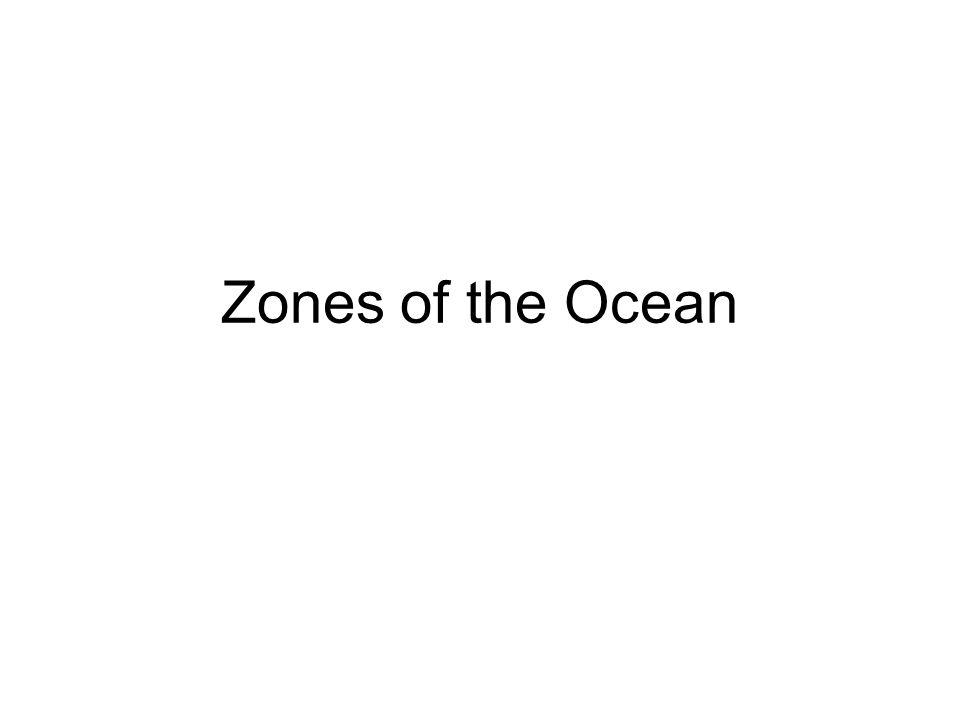 Zones of the Ocean