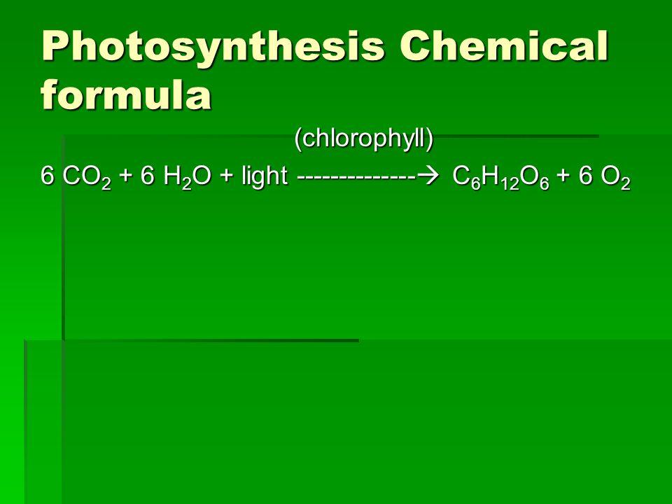 Photosynthesis Chemical formula (chlorophyll) (chlorophyll) 6 CO 2 + 6 H 2 O + light -------------- C 6 H 12 O 6 + 6 O 2