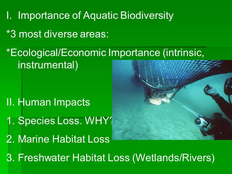 I.Importance of Aquatic Biodiversity *3 most diverse areas: *Ecological/Economic Importance (intrinsic, instrumental) II.