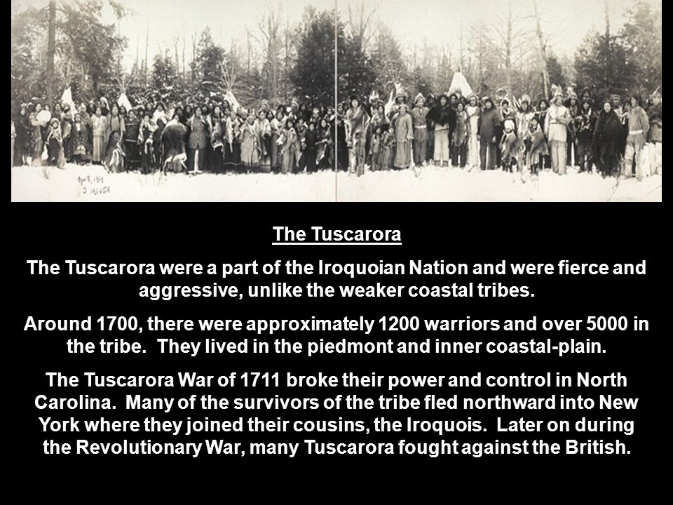 The Tuscarora The Tuscarora were a part of the Iroquoian Nation and were fierce and aggressive, unlike the weaker coastal tribes. Around 1700, there w
