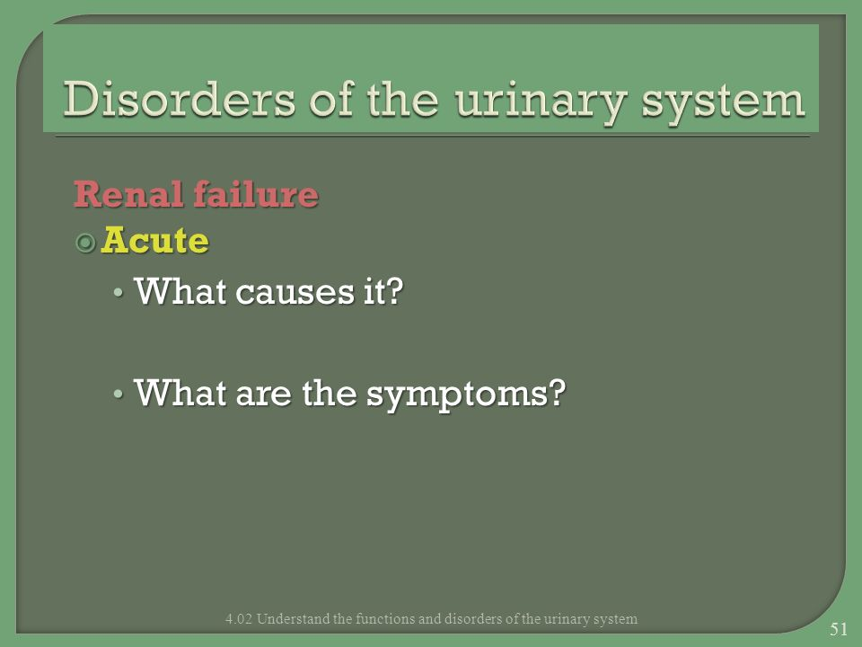 Renal failure Acute Acute What causes it? What causes it? What are the symptoms? What are the symptoms? 4.02 Understand the functions and disorders of