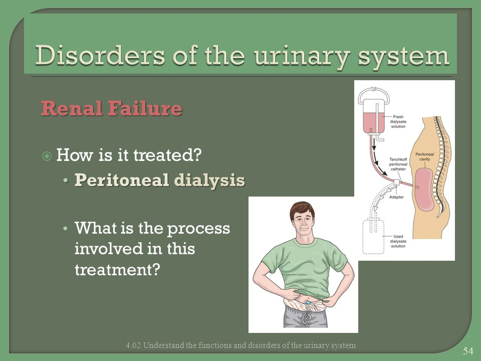 Renal Failure How is it treated? Peritoneal dialysis Peritoneal dialysis What is the process involved in this treatment? 4.02 Understand the functions