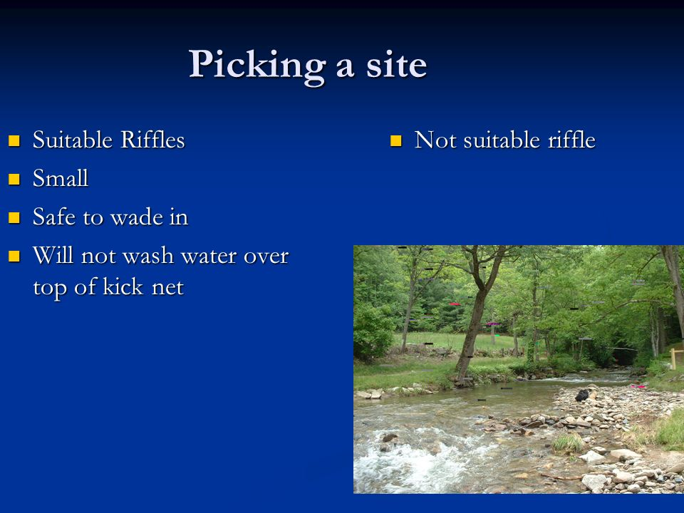 Picking a site Suitable Riffles Suitable Riffles Small Small Safe to wade in Safe to wade in Will not wash water over top of kick net Will not wash wa