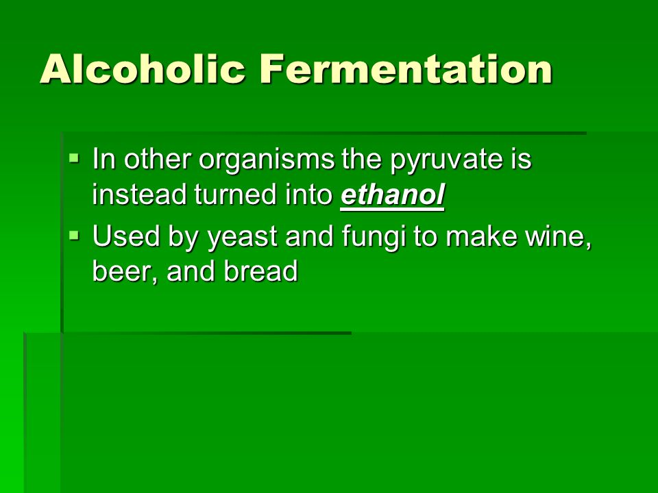 Alcoholic Fermentation In other organisms the pyruvate is instead turned into ethanol In other organisms the pyruvate is instead turned into ethanol U