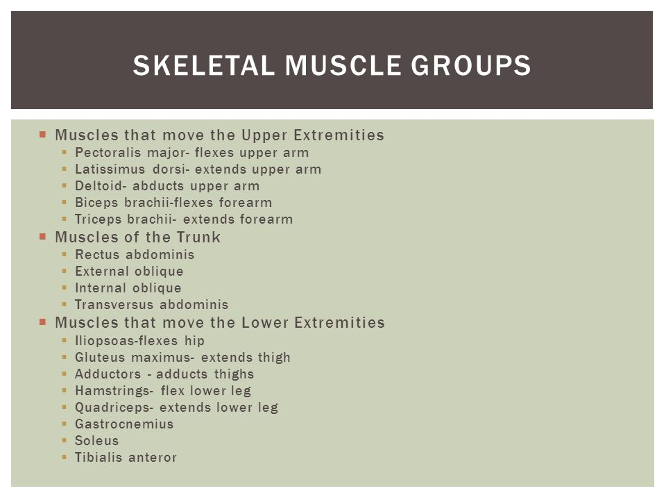 Muscles that move the Upper Extremities Pectoralis major- flexes upper arm Latissimus dorsi- extends upper arm Deltoid- abducts upper arm Biceps brach