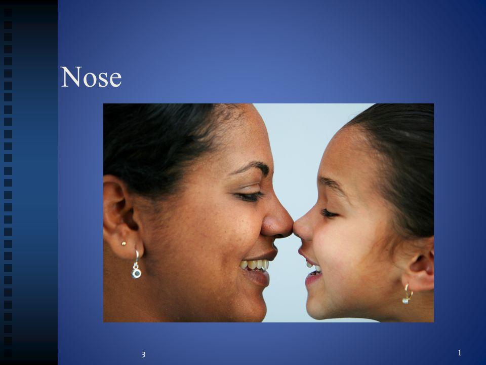 Nose 3 1