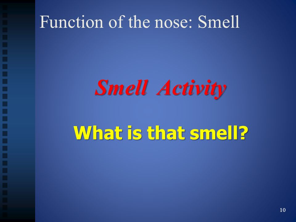 Function of the nose: Smell 10 Smell Activity What is that smell?