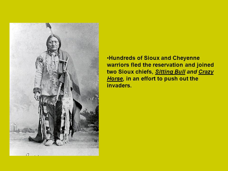 Hundreds of Sioux and Cheyenne warriors fled the reservation and joined two Sioux chiefs, Sitting Bull and Crazy Horse, in an effort to push out the i