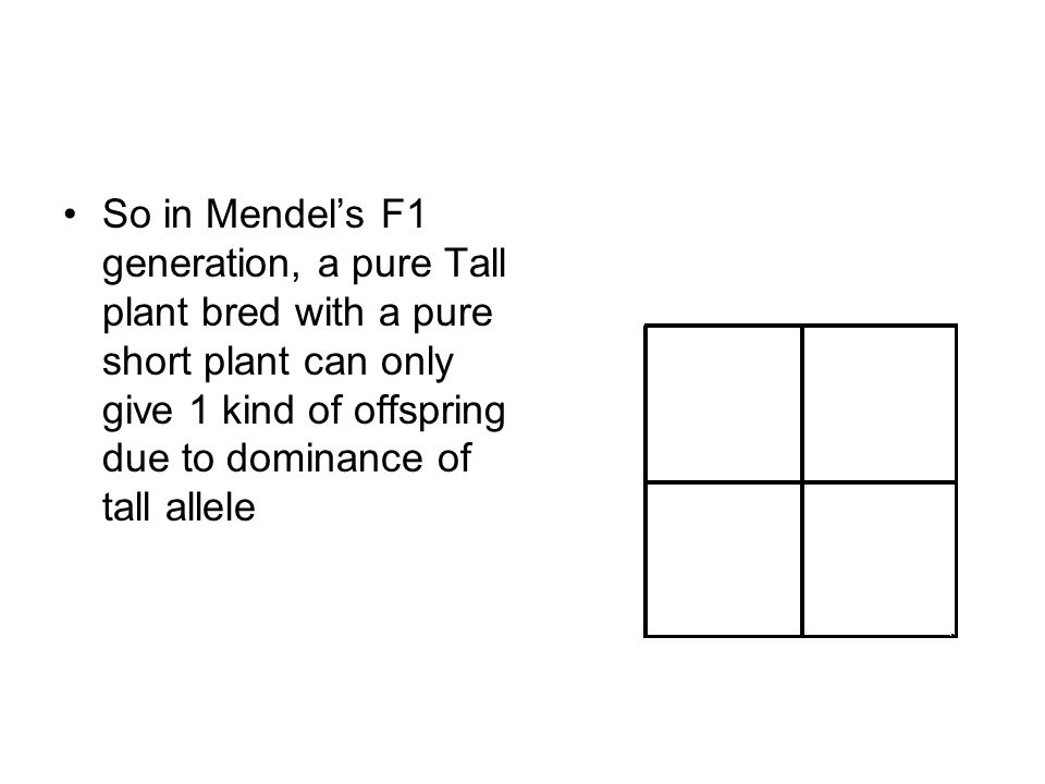 So in Mendels F1 generation, a pure Tall plant bred with a pure short plant can only give 1 kind of offspring due to dominance of tall allele