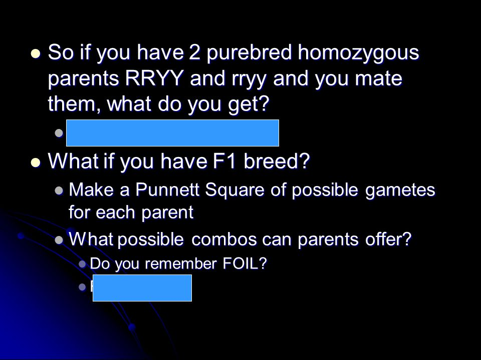 So if you have 2 purebred homozygous parents RRYY and rryy and you mate them, what do you get? So if you have 2 purebred homozygous parents RRYY and r