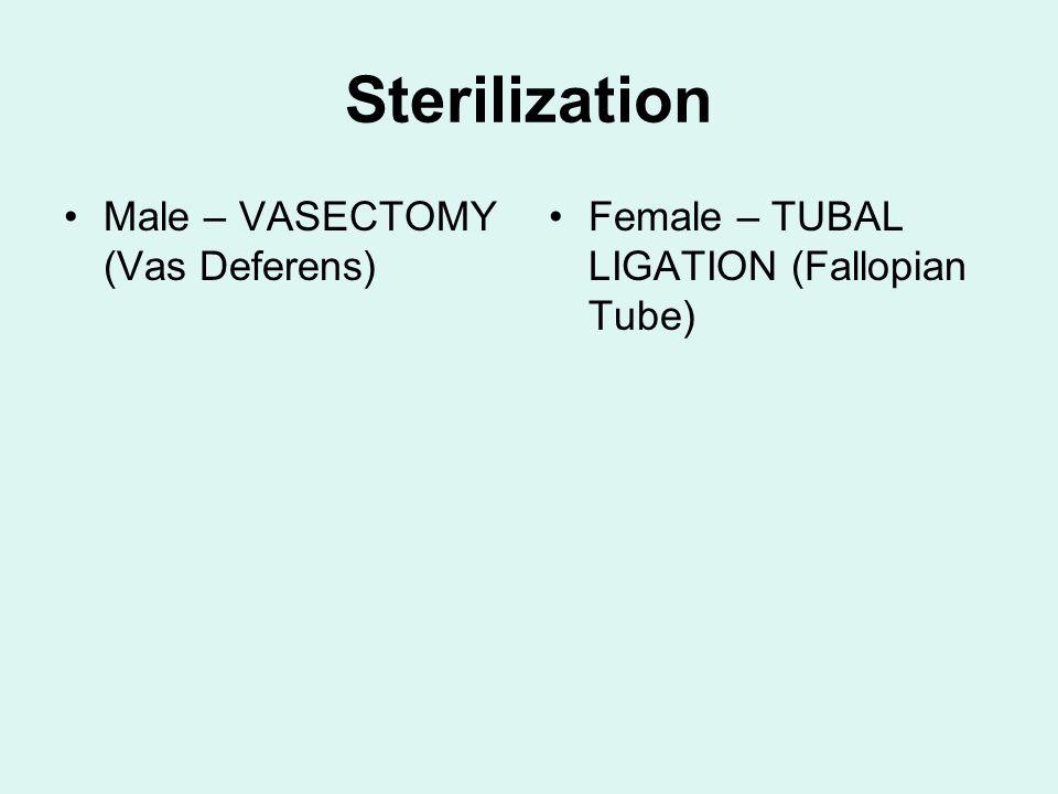 Sterilization Male – VASECTOMY (Vas Deferens) Female – TUBAL LIGATION (Fallopian Tube)
