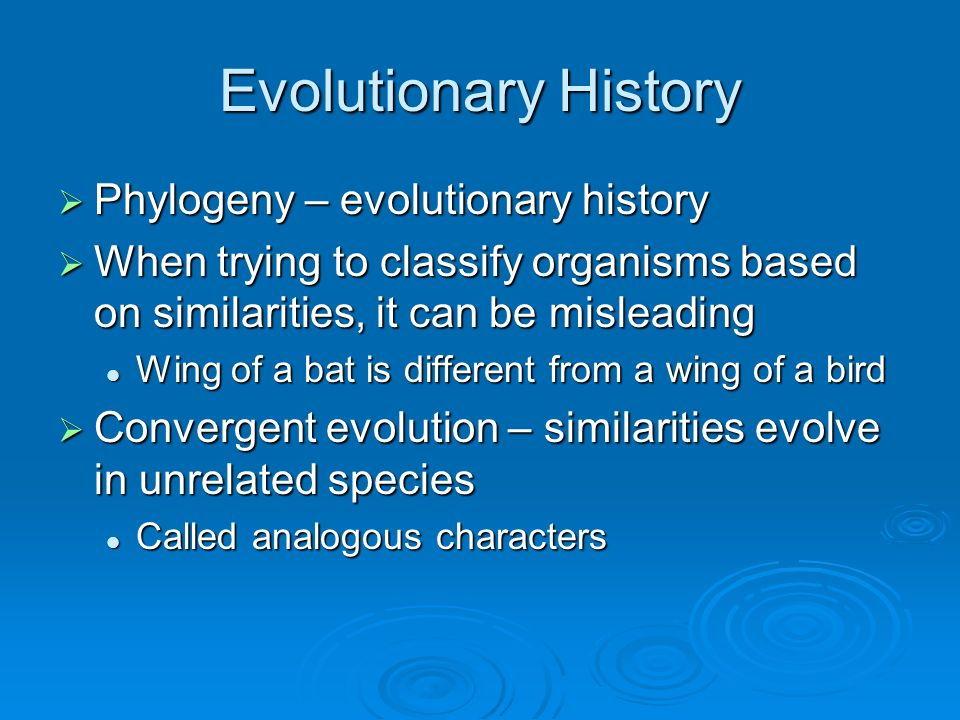 Evolutionary History Phylogeny – evolutionary history Phylogeny – evolutionary history When trying to classify organisms based on similarities, it can