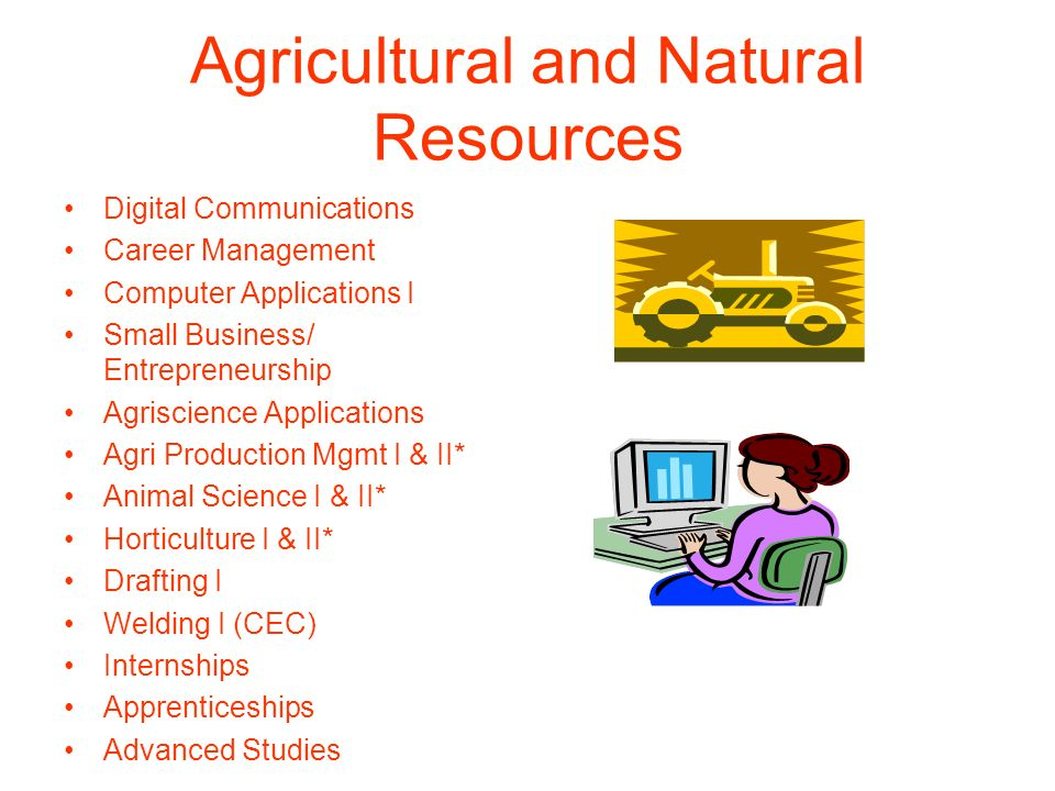 Agricultural and Natural Resources Digital Communications Career Management Computer Applications I Small Business/ Entrepreneurship Agriscience Appli