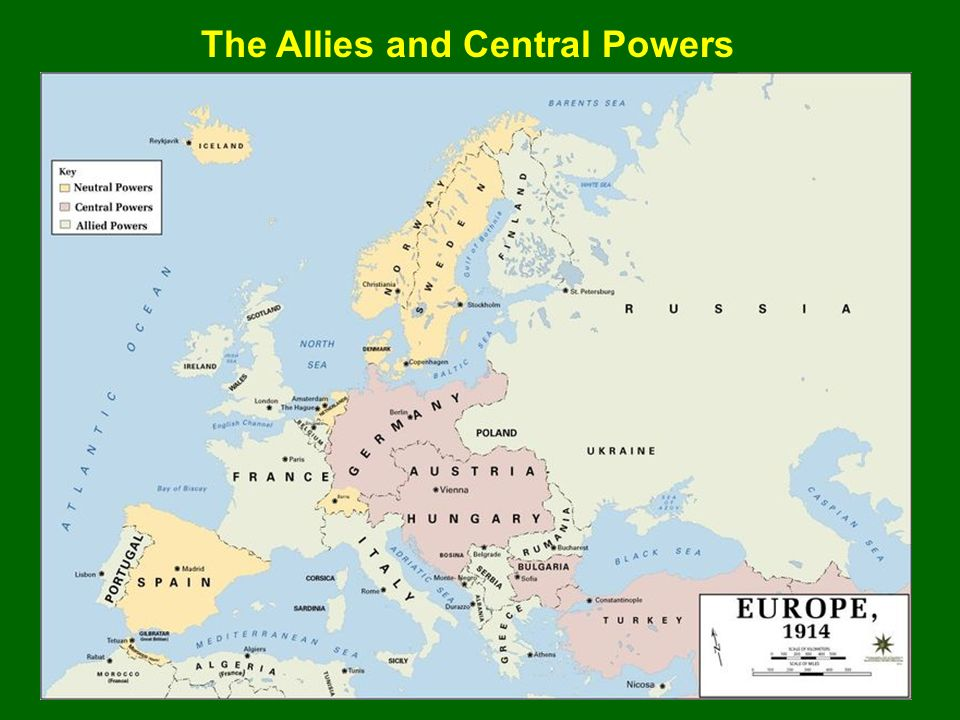The Allies and Central Powers