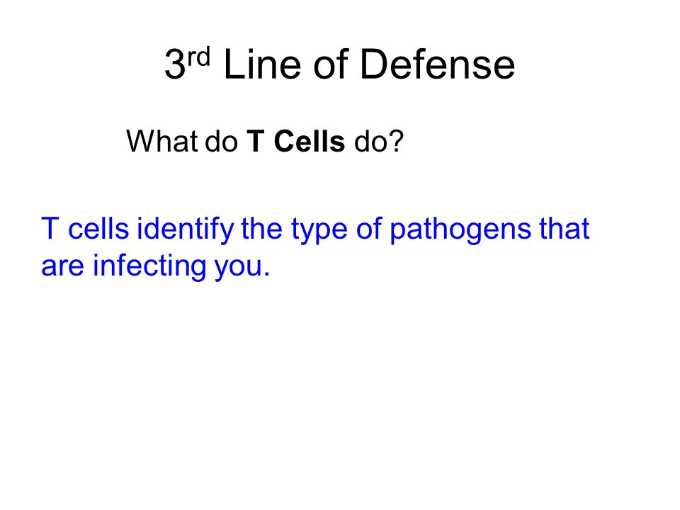 3 rd Line of Defense What do T Cells do? T cells identify the type of pathogens that are infecting you.