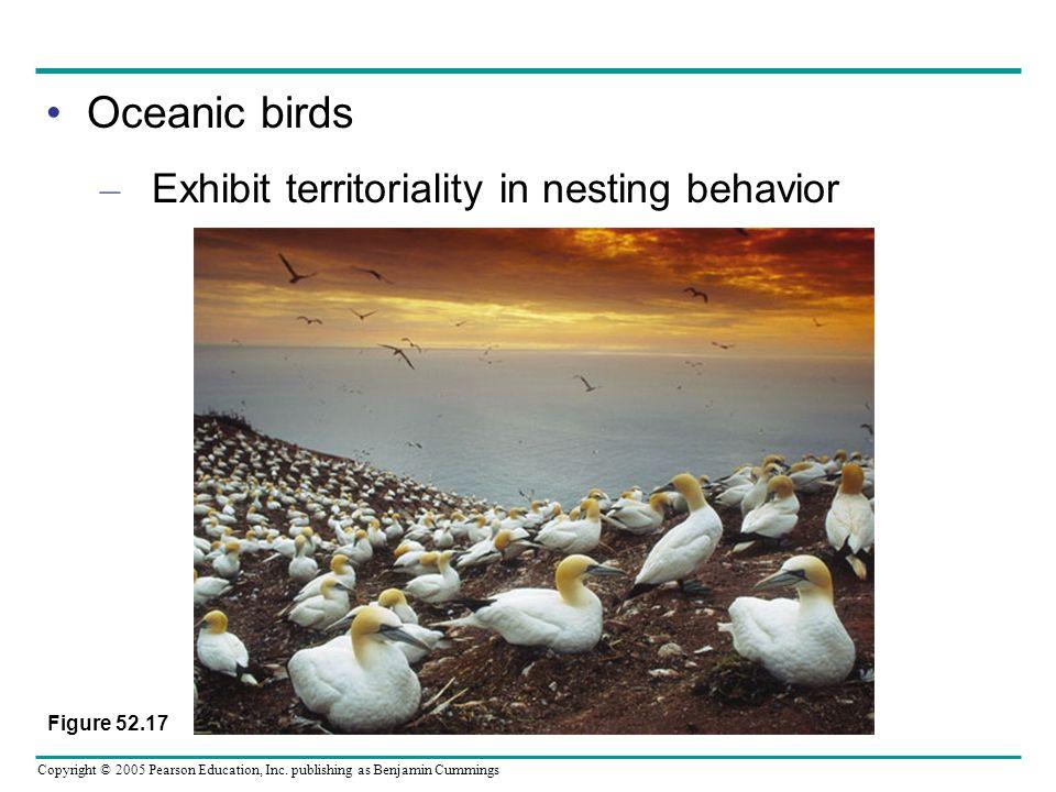Copyright © 2005 Pearson Education, Inc. publishing as Benjamin Cummings Oceanic birds – Exhibit territoriality in nesting behavior Figure 52.17