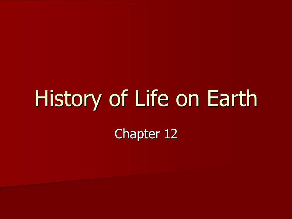 History of Life on Earth Chapter 12