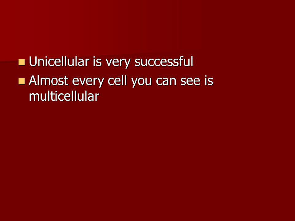 Unicellular is very successful Unicellular is very successful Almost every cell you can see is multicellular Almost every cell you can see is multicel
