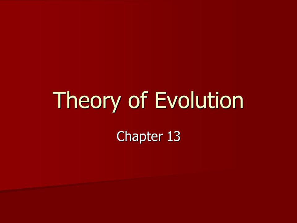 Theory of Evolution Chapter 13