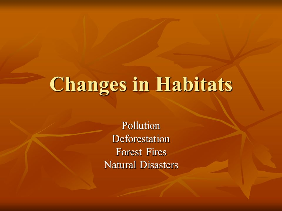 Changes in Habitats PollutionDeforestation Forest Fires Natural Disasters