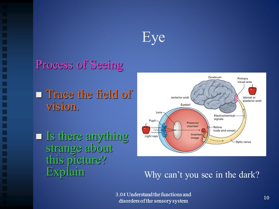 Eye Process of Seeing Trace the field of vision.Trace the field of vision.