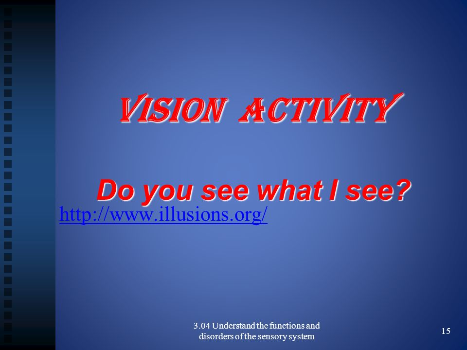 3.04 Understand the functions and disorders of the sensory system 15 Vision Activity Do you see what I see.