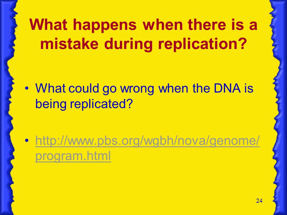 24 What happens when there is a mistake during replication? What could go wrong when the DNA is being replicated? http://www.pbs.org/wgbh/nova/genome/