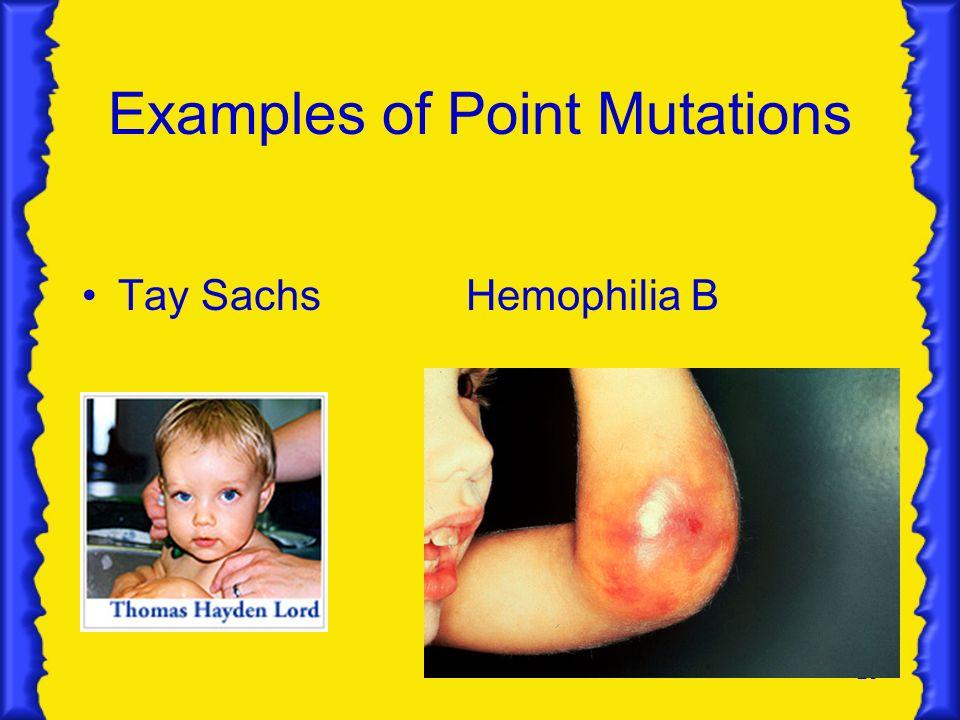 28 Examples of Point Mutations Tay SachsHemophilia B