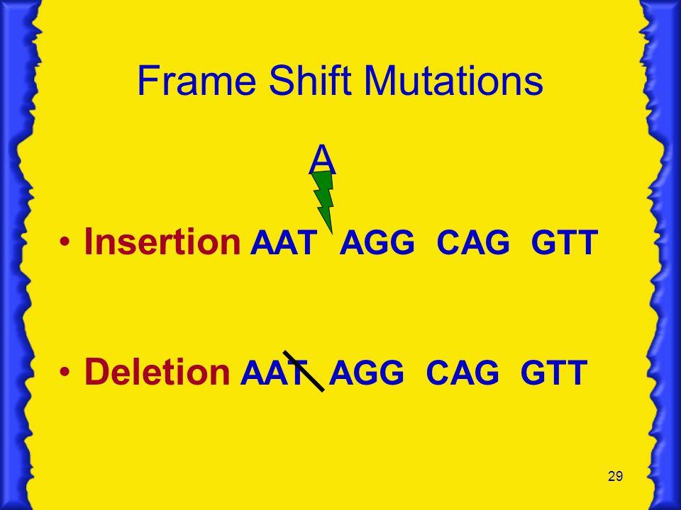 29 Frame Shift Mutations A Insertion AAT AGG CAG GTT Deletion AAT AGG CAG GTT