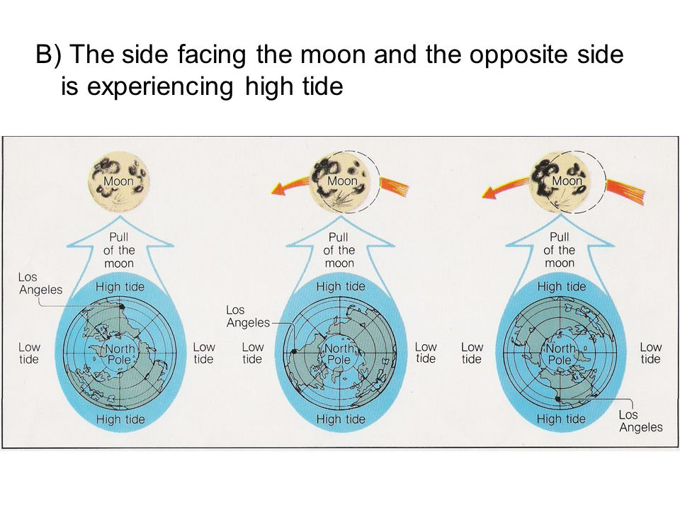 B) The side facing the moon and the opposite side is experiencing high tide