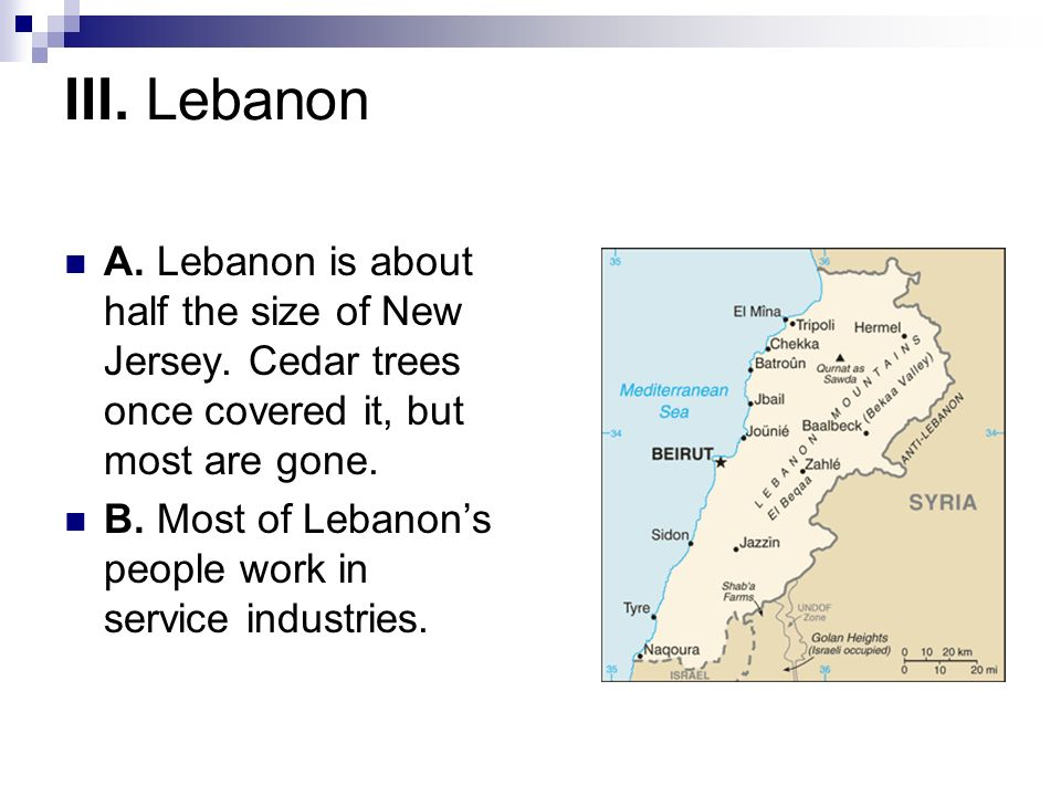 III. Lebanon A. Lebanon is about half the size of New Jersey. Cedar trees once covered it, but most are gone. B. Most of Lebanons people work in servi