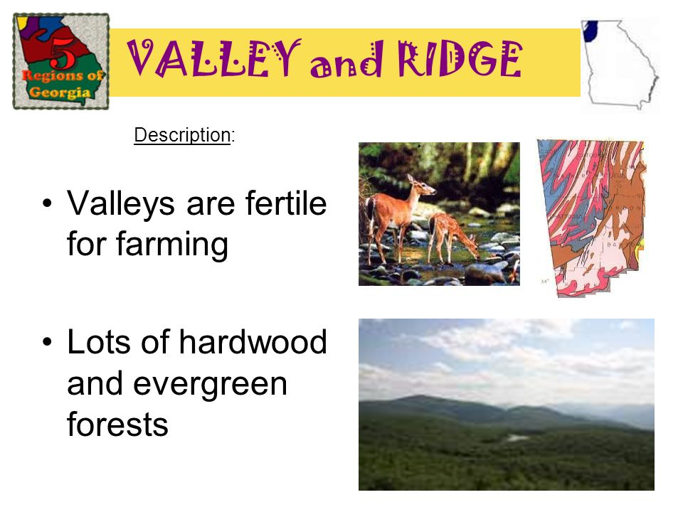 VALLEY and RIDGE Description: Valleys are fertile for farming Lots of hardwood and evergreen forests
