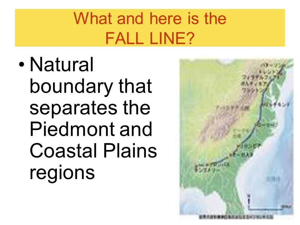 What and here is the FALL LINE? Natural boundary that separates the Piedmont and Coastal Plains regions
