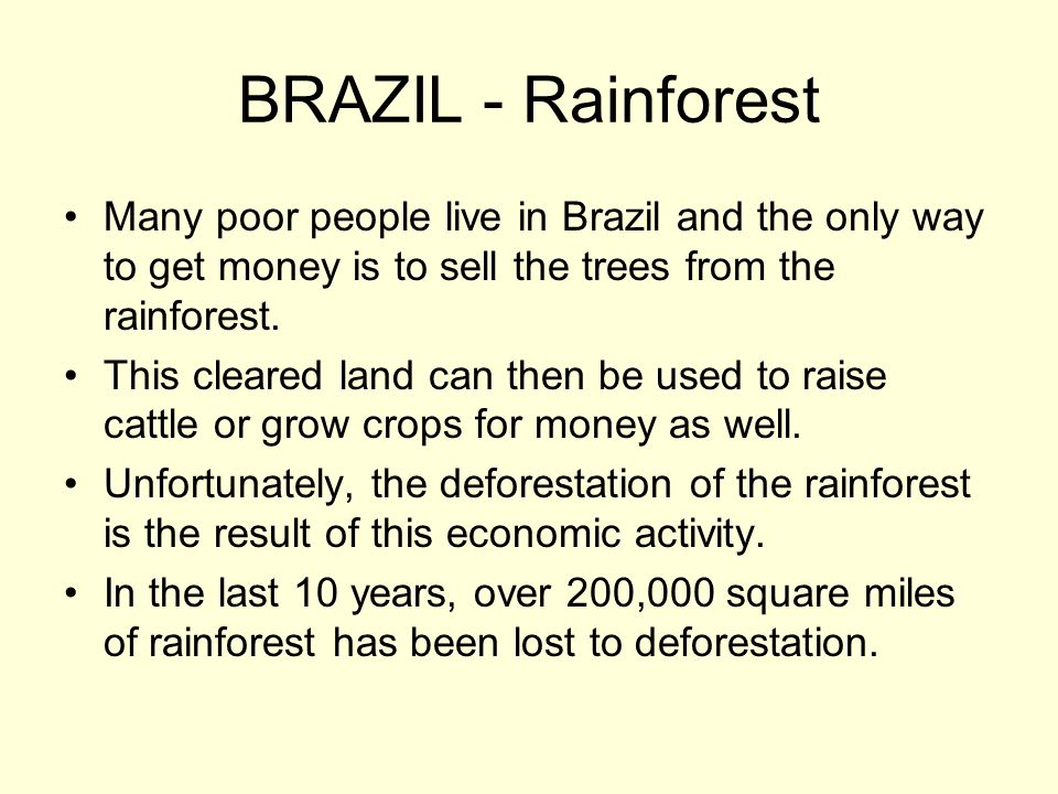 BRAZIL - Rainforest Many poor people live in Brazil and the only way to get money is to sell the trees from the rainforest. This cleared land can then