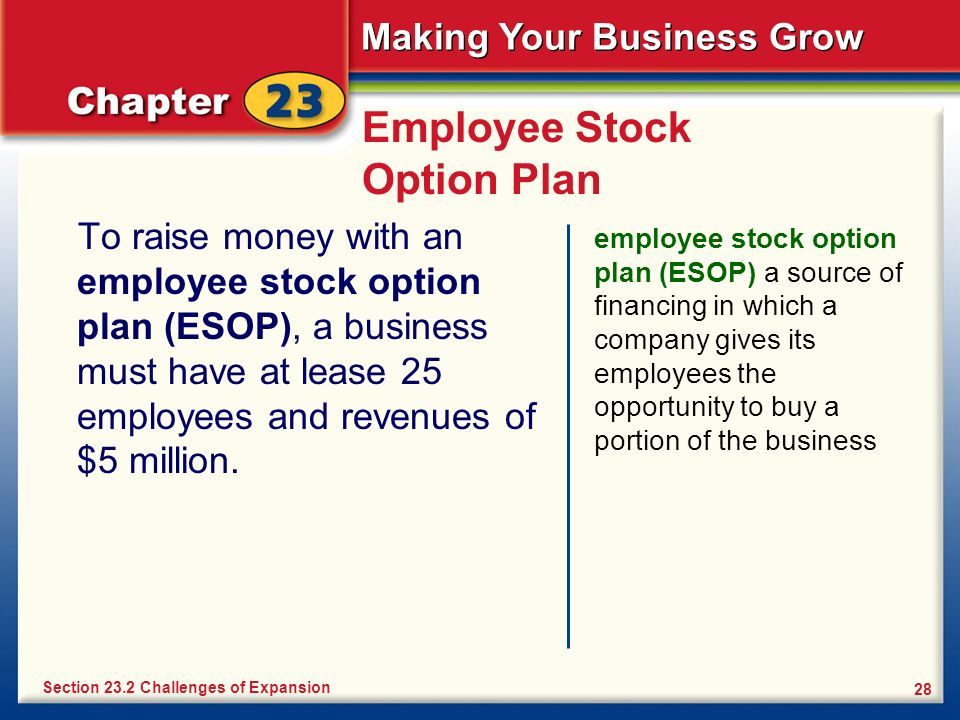 Making Your Business Grow 28 Employee Stock Option Plan To raise money with an employee stock option plan (ESOP), a business must have at lease 25 emp