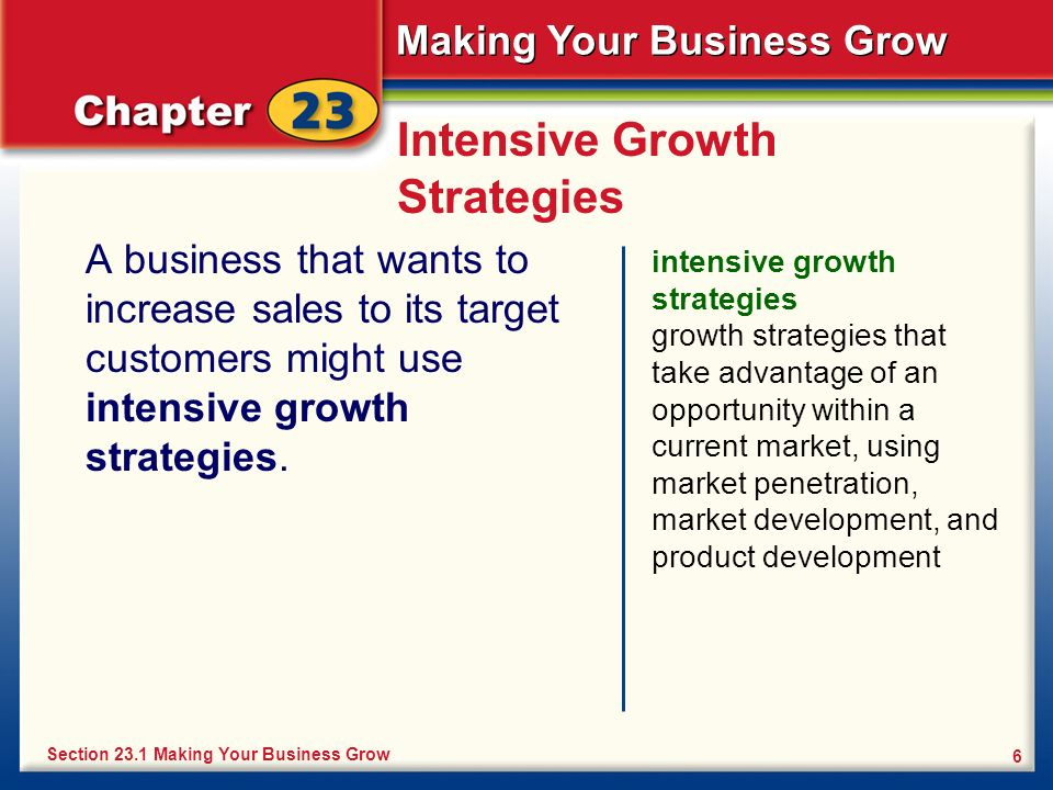 Making Your Business Grow 6 Intensive Growth Strategies A business that wants to increase sales to its target customers might use intensive growth str