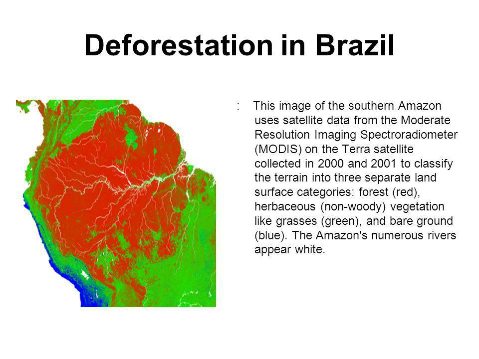 Deforestation in Brazil : This image of the southern Amazon uses satellite data from the Moderate Resolution Imaging Spectroradiometer (MODIS) on the