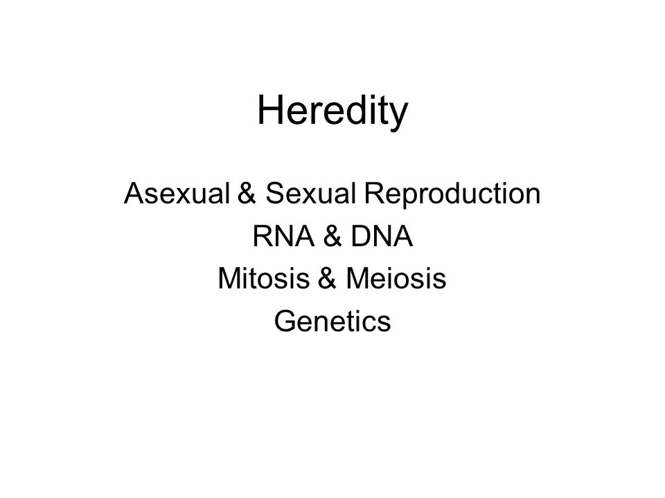 Heredity Asexual & Sexual Reproduction RNA & DNA Mitosis & Meiosis Genetics