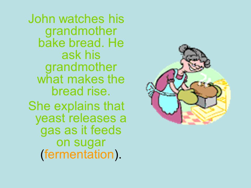 John watches his grandmother bake bread. He ask his grandmother what makes the bread rise. She explains that yeast releases a gas as it feeds on sugar