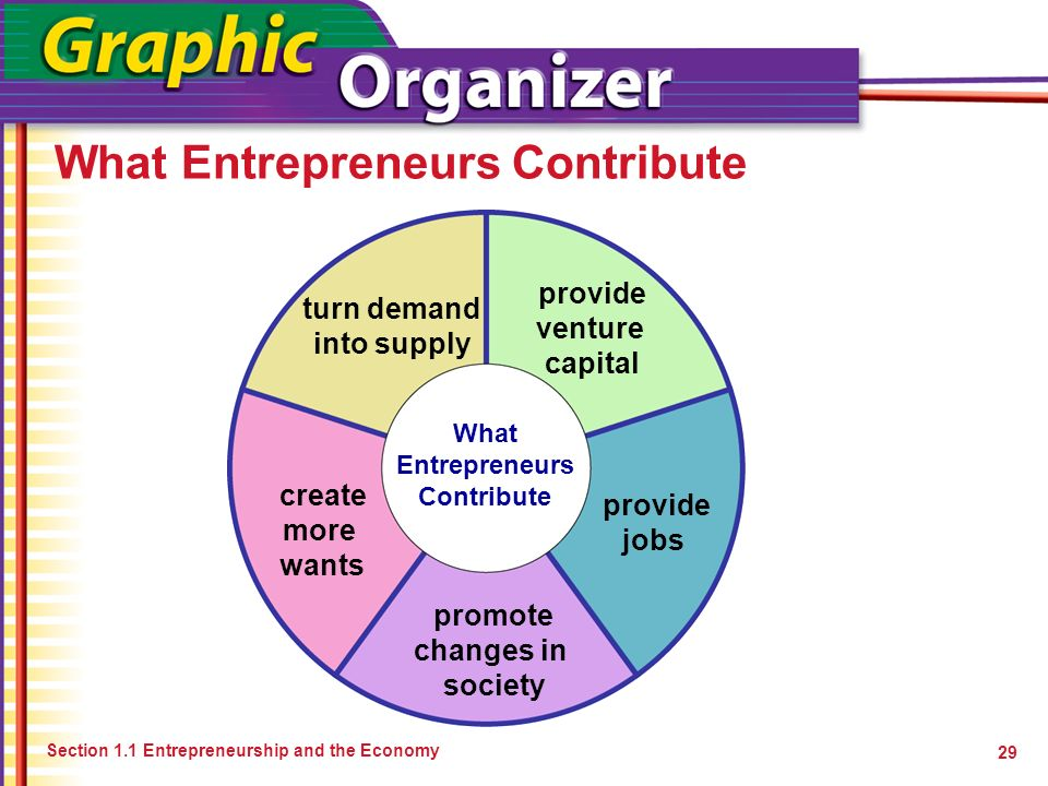 What Entrepreneurs Contribute Section 1.1 Entrepreneurship and the Economy 29 What Entrepreneurs Contribute turn demand into supply provide venture ca