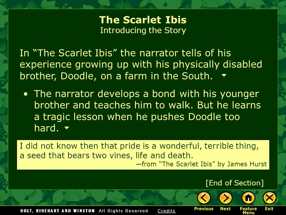 The Scarlet Ibis Introducing the Story In The Scarlet Ibis the narrator tells of his experience growing up with his physically disabled brother, Doodle, on a farm in the South.